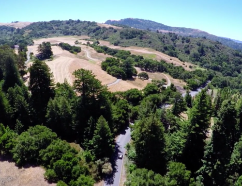 Aerial Videography of Bay Area Peninsula